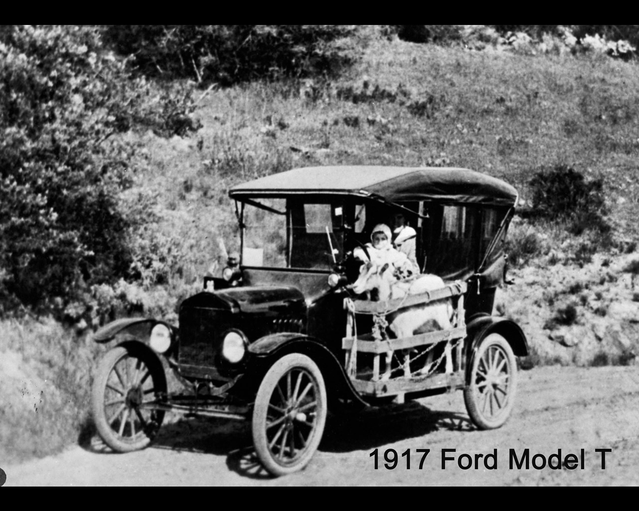 the ford model t the revolution in the american automobile industry Ford motor company american it was used to show how the ford model t was marketed during this time the automobile industry in the united states was booming.